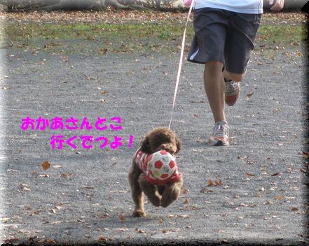 3_20101203183854.jpg