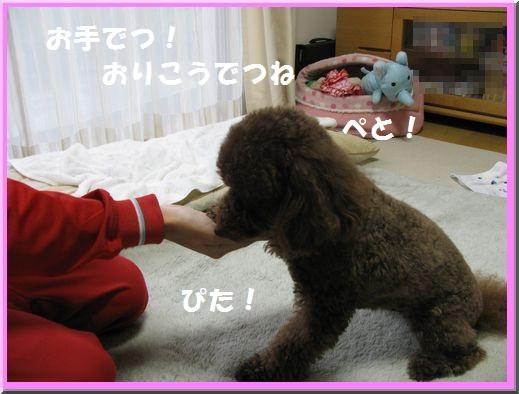 5_20101028191634.jpg