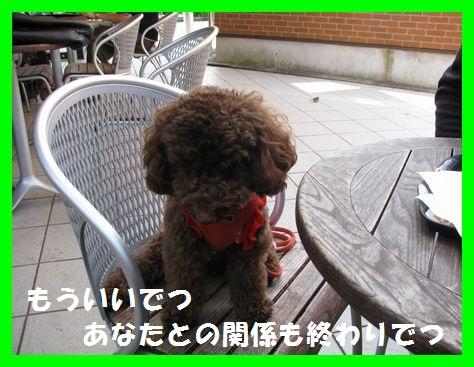 6_20101021172046.jpg
