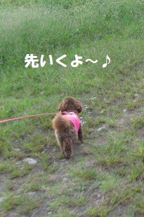 7_20101013202825.jpg