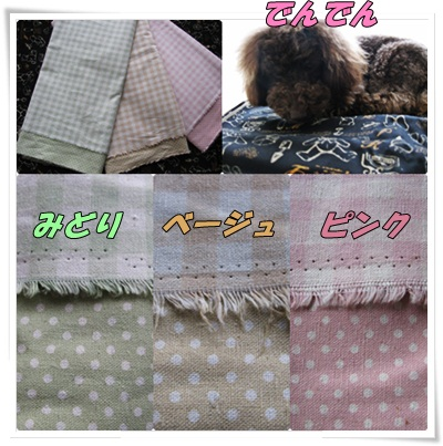 cats_20110418123858.jpg