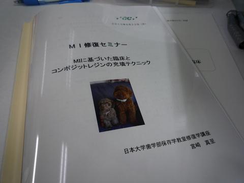 P1020457.jpg