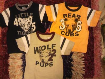 Tシャツ 6