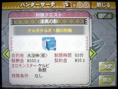mh3g120113_5.jpg