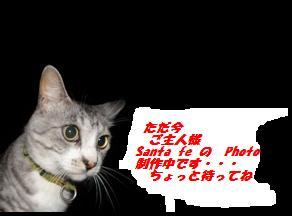 7162011a1a1.jpg