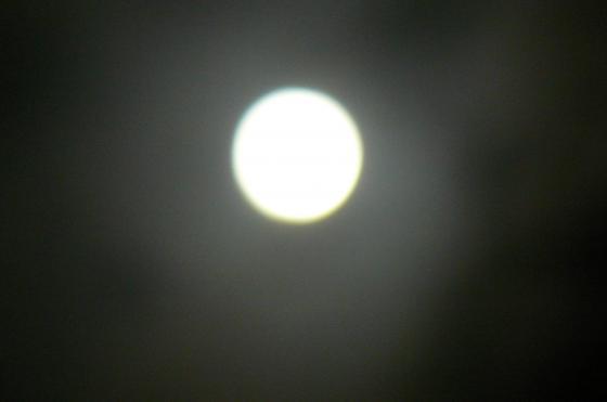 P1460967_convert_20121031100029.jpg