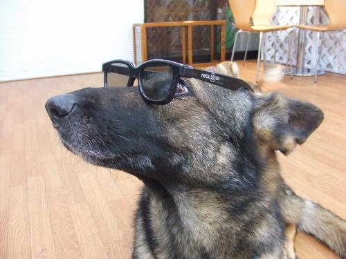 横顔メガネ