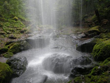 10082311山彦の滝