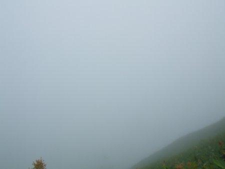 霧の摩周湖05.jpg