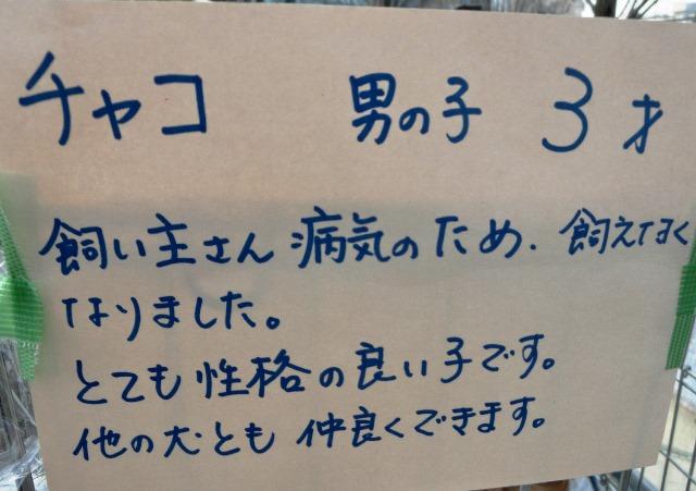 CIMG0446.jpg