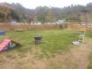 23 4 21 芝刈り