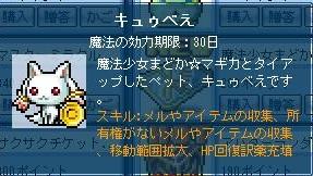 Maple111026_151507.jpg