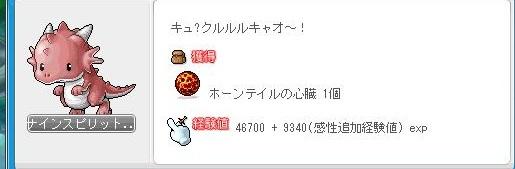 Maple120108_170049.jpg