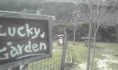 庭には二羽にわとりが?