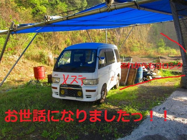 IMG_2361.jpg