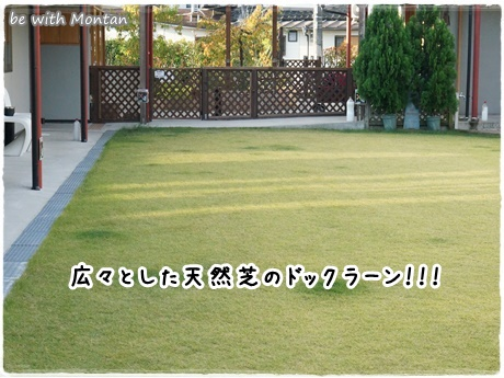 DSC00529-20141110.jpg