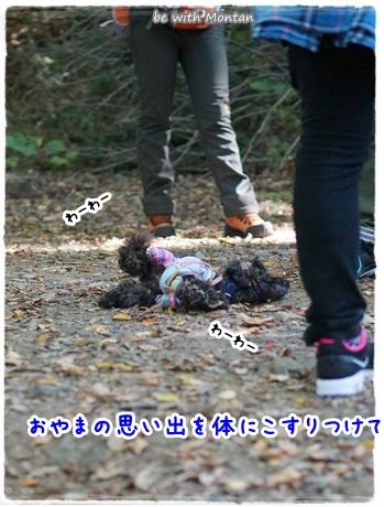 DSC01143-20141119.jpg
