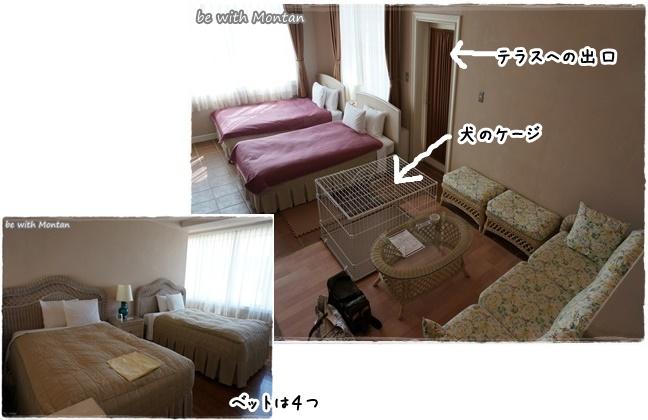 DSC02408-20140927.jpg