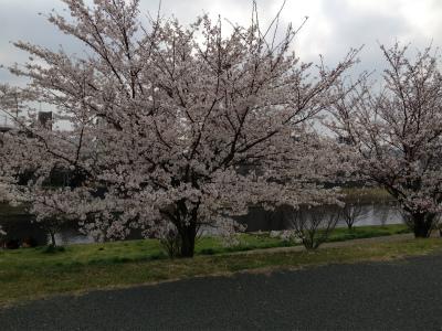s-20130324-板橋シティ-IMG_1897