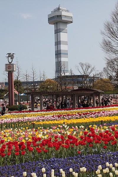 木曽三川公園 チューリップと塔