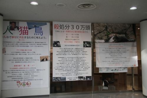 神戸写真展2 008