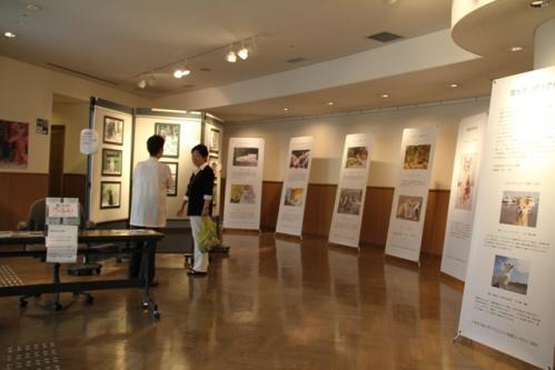 神戸写真展2 005