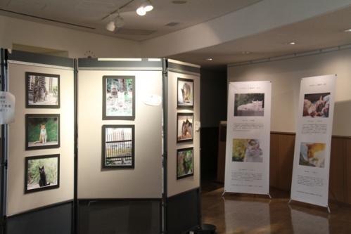 神戸写真展2 006