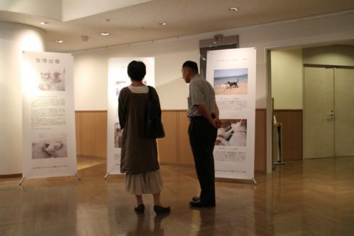 神戸写真展3 030