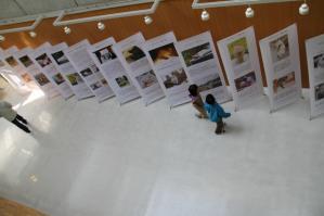 生駒写真展2011 005