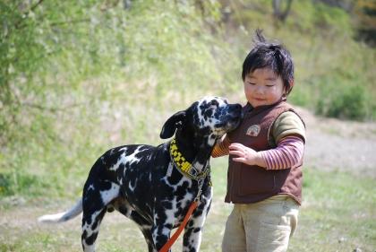 Img154_dog_big.jpg