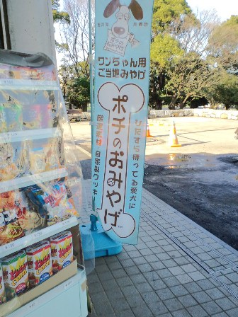 3.10駒沢公園6