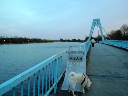3.30水元大橋