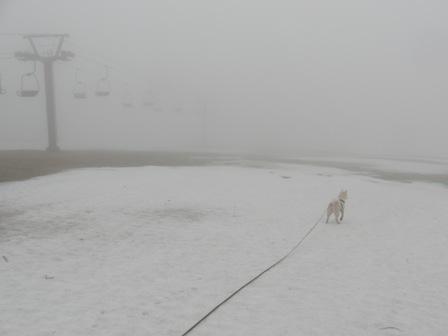 4.11スキー場1