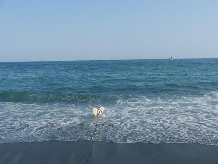 5.2御幸の浜2