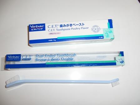 6.1歯磨きセット
