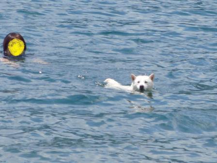 7.21母と泳ぐ4