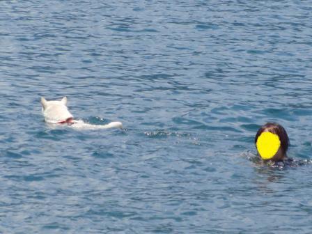 7.21母と泳ぐ2