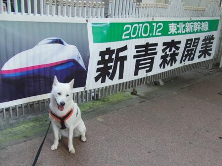 8.29東北新幹線