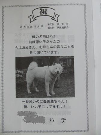 9.7出陳目録・ハチ