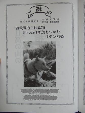 9.7出陳目録・花