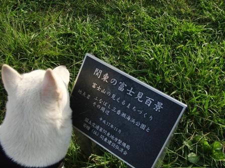 10.3船橋三番瀬海浜公園3