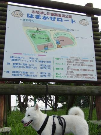 10.3船橋三番瀬海浜公園2