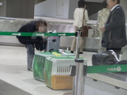 10.28成田空港にて3