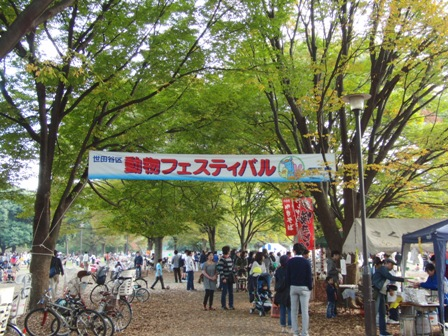 11.7動物フェスティバル