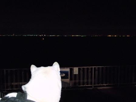11.26海ほたる2川崎側