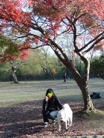 12.5太田山公園3