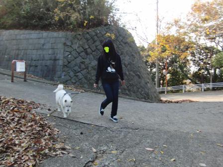 12.5太田山公園2