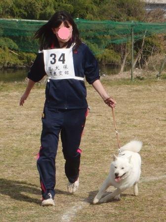 獣猟・牝犬全犬優勝