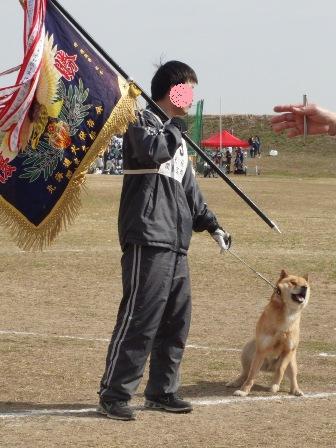 牡犬・展覧全犬優勝