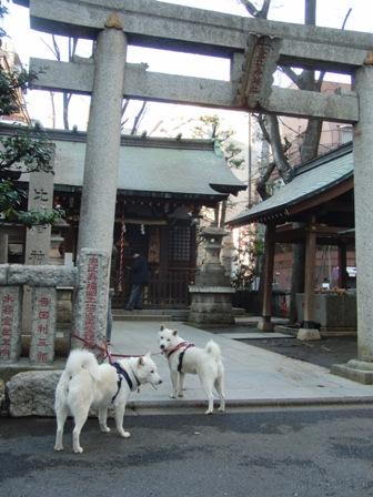 12.11恵比寿神社